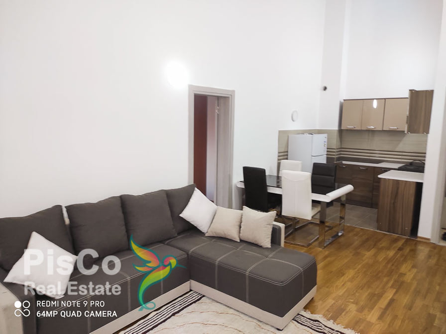 Two bedroom apartment for rent at the Old Airport   Podgorica
