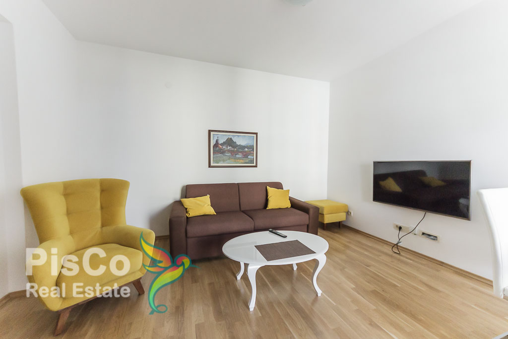 One bedroom uninhabited luxury apartment for rent in Block 9 | Podgorica